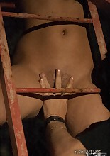 Passionate Hunger, pic #13